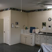 puppy nursery and grooming room at Pierce Schnoodles in Raleigh NC
