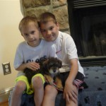 Willson pups goes home -Toby