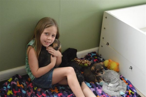Ellie loving on Pennys pups